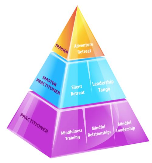 Pyramid AIAM